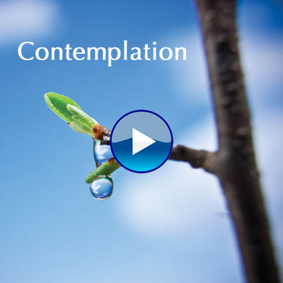 Music For Contemplation